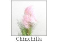 Drutex Glasarten - Verglasung - Chinchilla - Scheibe