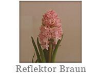 Drutex Glasarten - Verglasung - Reflektor Braun - Reflektorglas - Scheibe